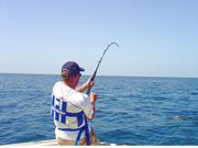 Big game fishing in the Adriatic around Dubrovnik