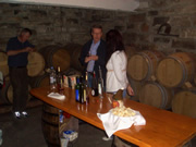 Tasting of varied sorts of Dubrovnik Hills wines