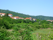 Konavle Valley near Dubrovnik is a place of lush vegetation